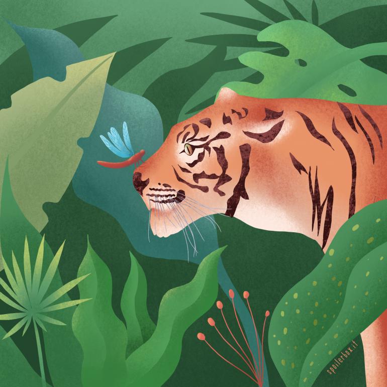 La giungla è soft o hard?